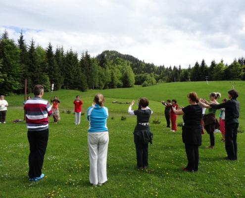 zhu lingtong qigong practice outdoors